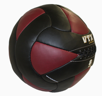 VTX 8lb Leather Wall Ball $65.99