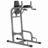 XMark XM-4437.1 Vertical Knee Raise with Dip Station $269.99
