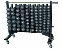 York Neo-Hex Neoprene Dumbbell Club Pack With Rack $1,099.00