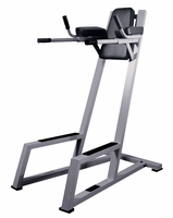 York Vertical Knee Raise W/ Dip Station $849.99