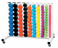 York Vinyl Dumbbell Club Pack W/Rack $1,369.99