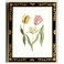 380354 Chelsea House Tulip/Decorative Frame (991)
