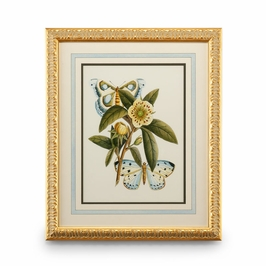 386095 Chelsea House Butterfly Oasis I-Plate Lithograph Gold Leafed Frame With French Mat