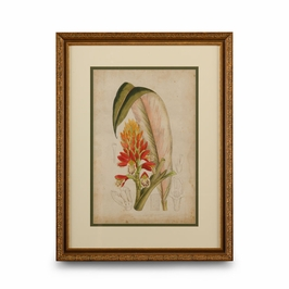 386136 Chelsea House Curtis Tropical Blooms II-Giclee Print Gold Frame With Double Mat
