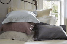 Featured:  SDH Classic Legna Bedding