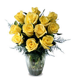 Brighten your Day w / Yellow Rose Bouquet