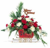CHRISTMAS FLOWERS IN SLEIGH