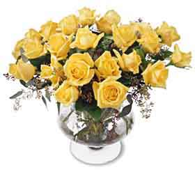 Classic  2 DZ YELLOW Rose Bouquet