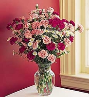 Dozen Mini Carnations in Vase $40.00