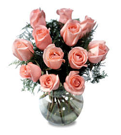 Medium Stem Color 12 Rose Bouquet