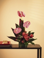 T035-02 Tropical with Anthurium