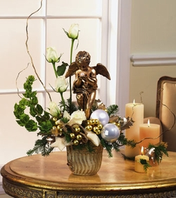 T073-01 Cherub Arrangement