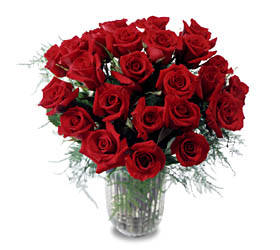 The FTD® Two Dozen Long Stemmed Roses