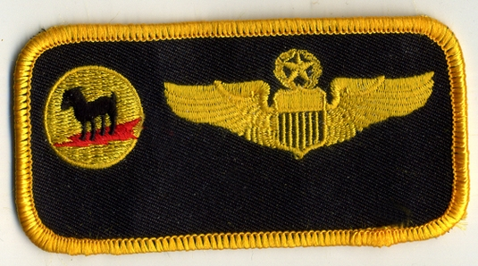 8TH FIGHTER SQUADRON NAMETAG