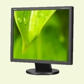 "NEC 19"" Value LED-Backlit Desktop Monitor w/ IPS Panel - AS193I-BK"