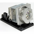 Optoma EH320USTi/EH320UST/W320UST/W320USTi, EH319UST/EH319USTi Replacement Projector Lamp - BL-FU260B