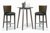 Counter Height Table & 2 Bar Stools