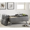 Dilleston Storage Ottoman with Chrome Legs