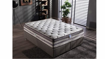 Antiaging Twin Size Mattress