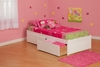 Modern Full Size Concord Platform bed Flat Panel with 2 Drawers Furniture