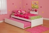 Modern Twin Size Concord Platform bed Flat Panel with Trundle Bed Furniture