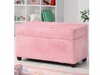 Youth Seating and Storage Upholstered Storage Bench