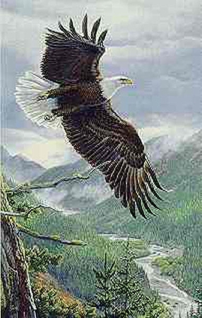"Al Agnew Limited Edition Print: ""Soaring Spirit"""