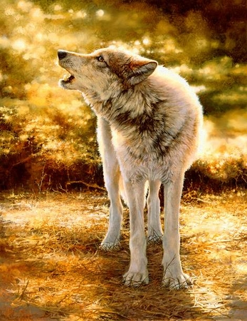 "Bonnie Marris Limited Edition Print: ""Wolf Song"""