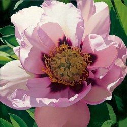 """Brian Davis Handsigned and Numbered Limited Edition Giclee on Canvas:""""Pink Peony"""""""