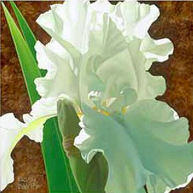 "Brian Davis Handsigned and Numbered Limited Edition Giclee on Canvas:""Solitary White Iris"""