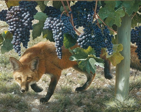 """Carl Brenders Hand Signed and Numbered Limited Edition: """"Between the Vines - Red Fox"""""""