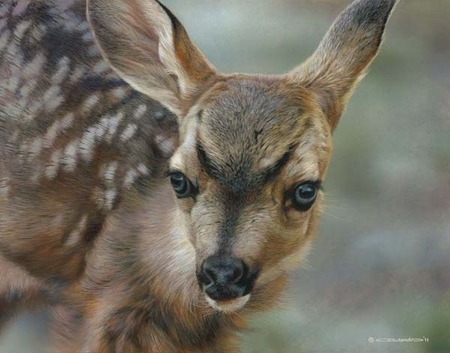 "Carl Brenders Hand Signed and Numbered Limited Edition Print:""Spotted"""