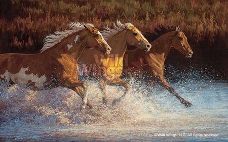 "Chris Cummings Hand Signed and Numbered Limited Edition Print: ""Thundering Water-Horses"""