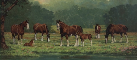 """Chris Cummings Handsigned & Numbered Limited Edition Print:""""Pastoral Clydesdales"""""""