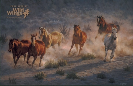 "Chris Cummings Limited Edition Print: ""Stone Canyon Run """