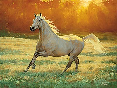 "Chris Cummings Signature Edition Print:""That's My Horse- Arabian Gray """