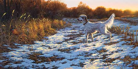 "Darrell Bush Handsigned and Numbered Limited Edition Artist Proof Print:""A Setter's Day"""