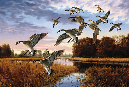 "David A. Maass Limited Edition AP Print:""Daybreak Descent- Geese"""