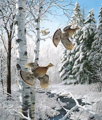 "David Maas Limited Edition Print: ""Winter Wonder - Ruffed Grouse"""