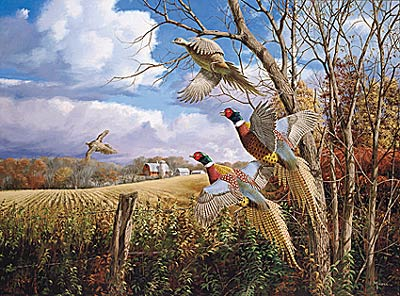 "David Maass Handsigned & Numbered Limited Edition Print:""October Memories -Pheasants"""
