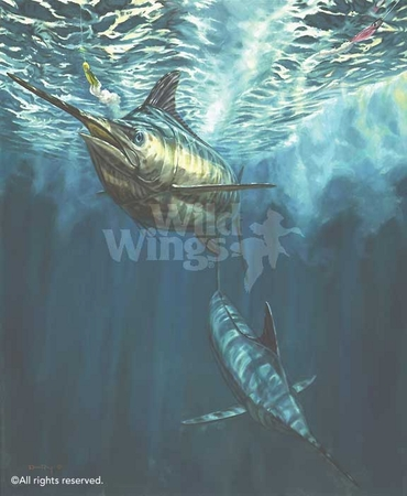 """Don Ray Handsigned and Numbered Limited Edition Print: """"Playin' the Blues-Marlin"""""""