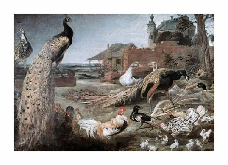 "Frans Snyders Fine Art Open Edition Giclée:""Crow in Peacock Feathers"""