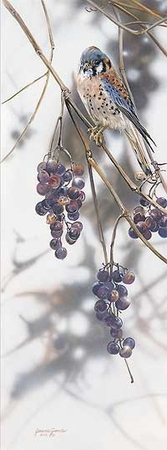 "Janene Grende Handsigned & Numbered Limited Edition Print:""Grape Expectations"""