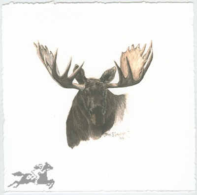 "Jean Gasser Giclee on Paper with Deckled Edges :""MOOSE VIGNETTE"""