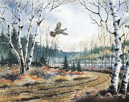 "Jerry Raedeke Handsigned and Numbered Limited Edition Print:""Birch Trail"""