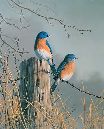 "Jim Hautman Limited Edition Print:""Bluebird Pair"""