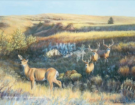 "Jim Kasper Hand Signed and Number Limited Edition Print:""Showing Off – Mule Deer"""