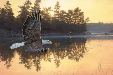 "Jim Kasper Handsigned & Numbered Limited Edition Print:""Gone Fishing-Bald Eagle"""
