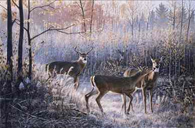 "Jim Kasper Limited Edition Print: ""Chance Encounter"""