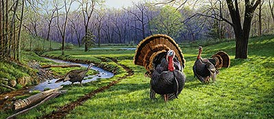 "Jim Kasper Hand Signed Limited Edition Artist Proof Print:""Spring Fed-Wild Turkeys """